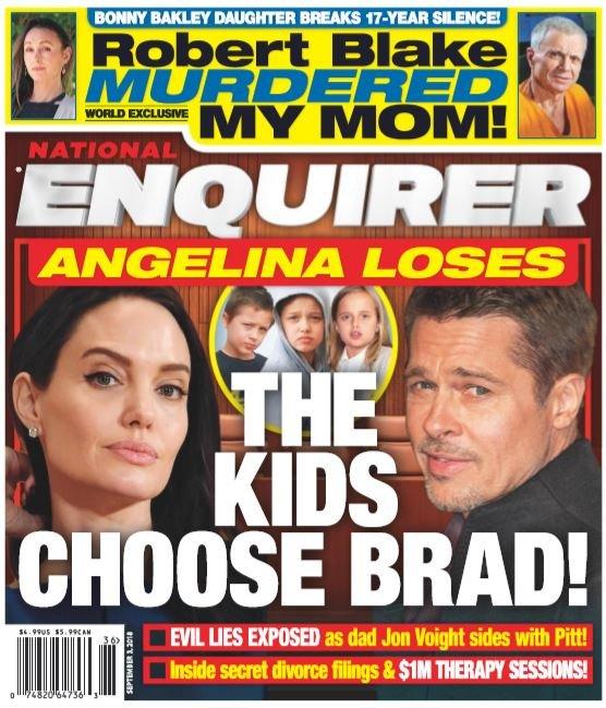 Angelina Jolie Loses Custody Cover