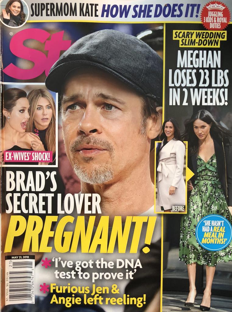 Brad Pitt Secret Lover Pregnant