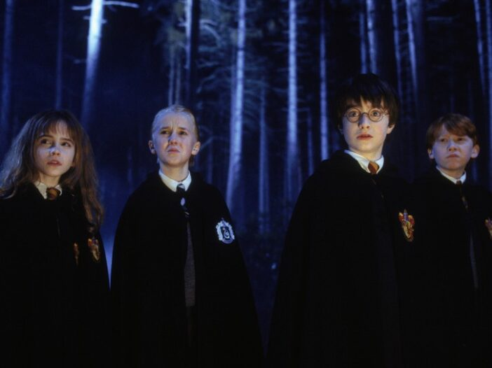 Hermione Granger, Draco Malfoy, Harry Potter, and Ron Weasley in the Forbidden Forest
