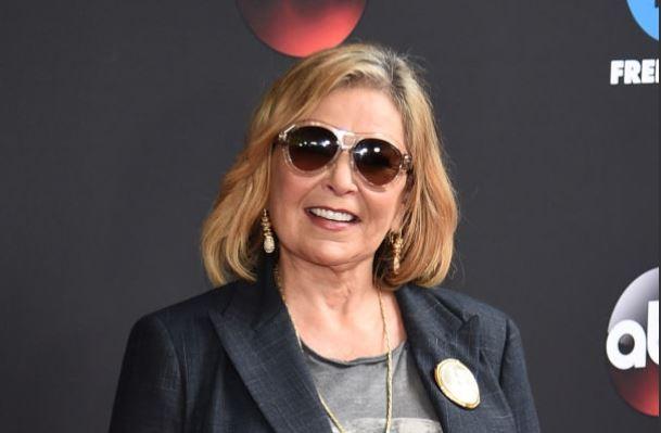 Roseanne New Sitcom