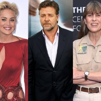 Three photos, from left to right: Sharon Stone in a red dress, Russell Crowe in a black suit, Terri Irwin in her Australia Zoo uniform.