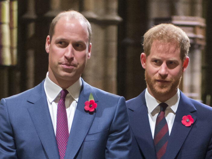 Prince William and Prince Harry standing together in blue suits