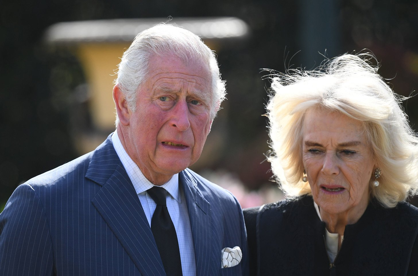 Prince Charles, Camilla Parker Bowles' 'Secret' Australian Son Posts 'Incredible' Proof They Are His Real Parents