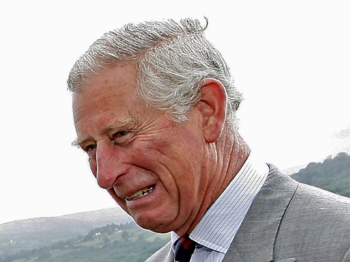 Prince Charles speaks with a small group of out of frame people outdoors