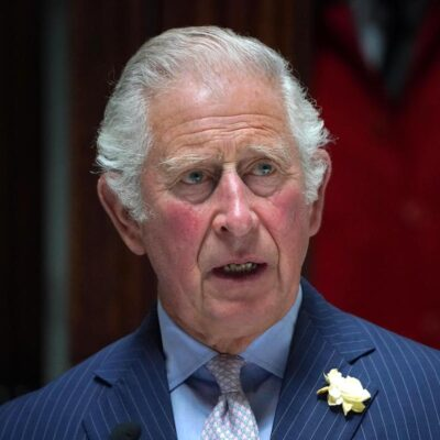 Prince Charles in a blue suit in the house of commons