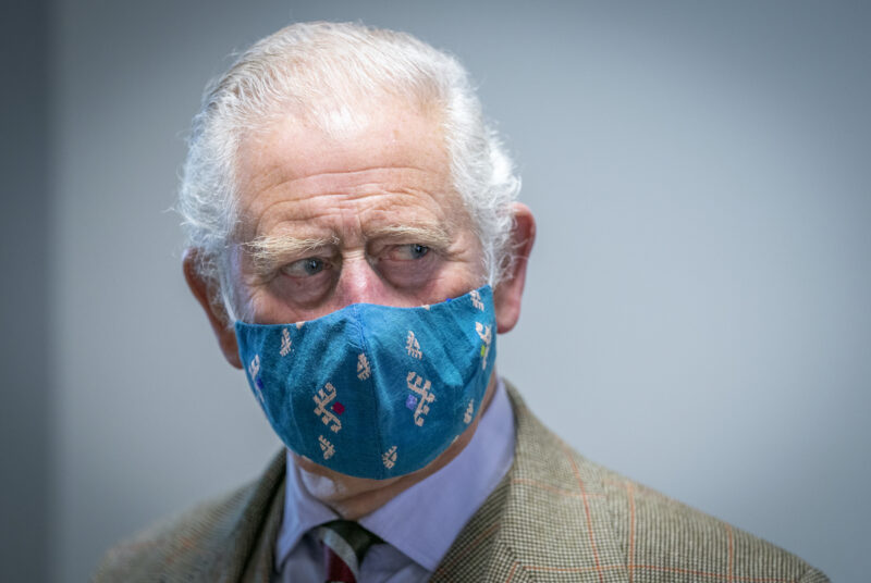 Prince Charles in a blue facemask and brown suit