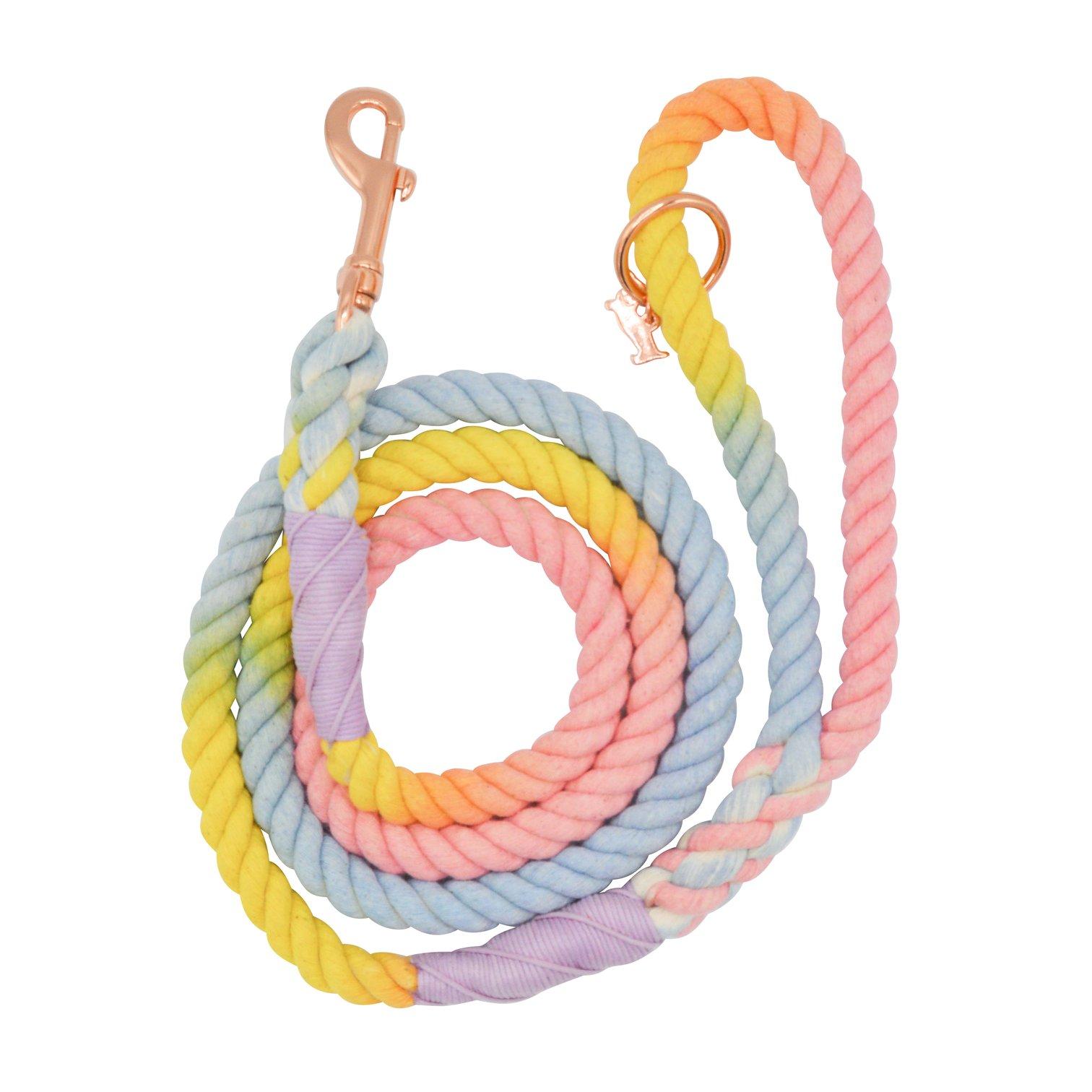 Rope Leash - Fiesta