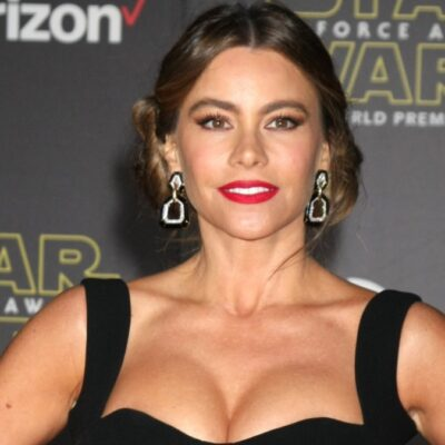Sofia Vergara wears a black dress on the red carpet
