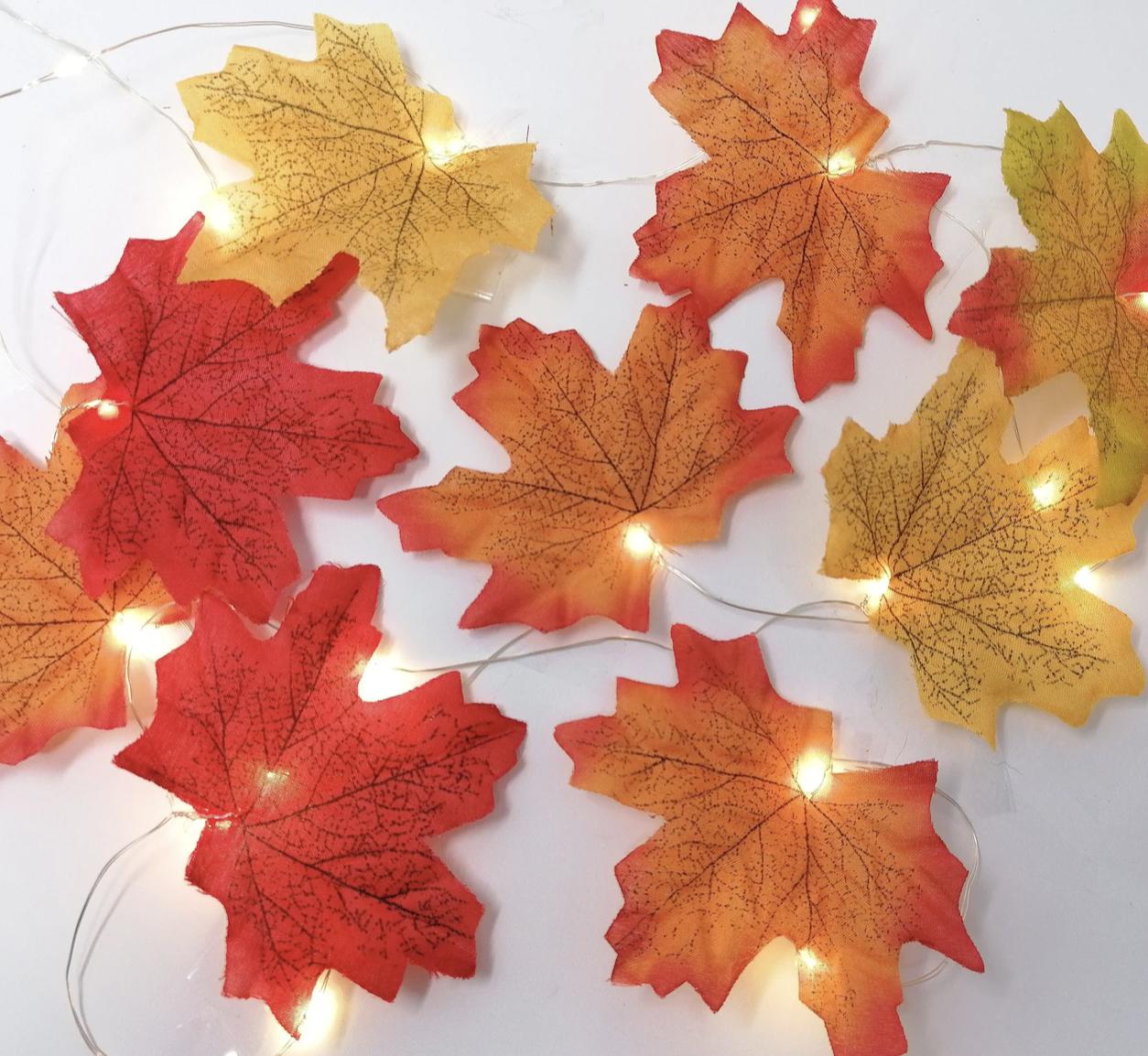 Autumn Wire Fairy Lights