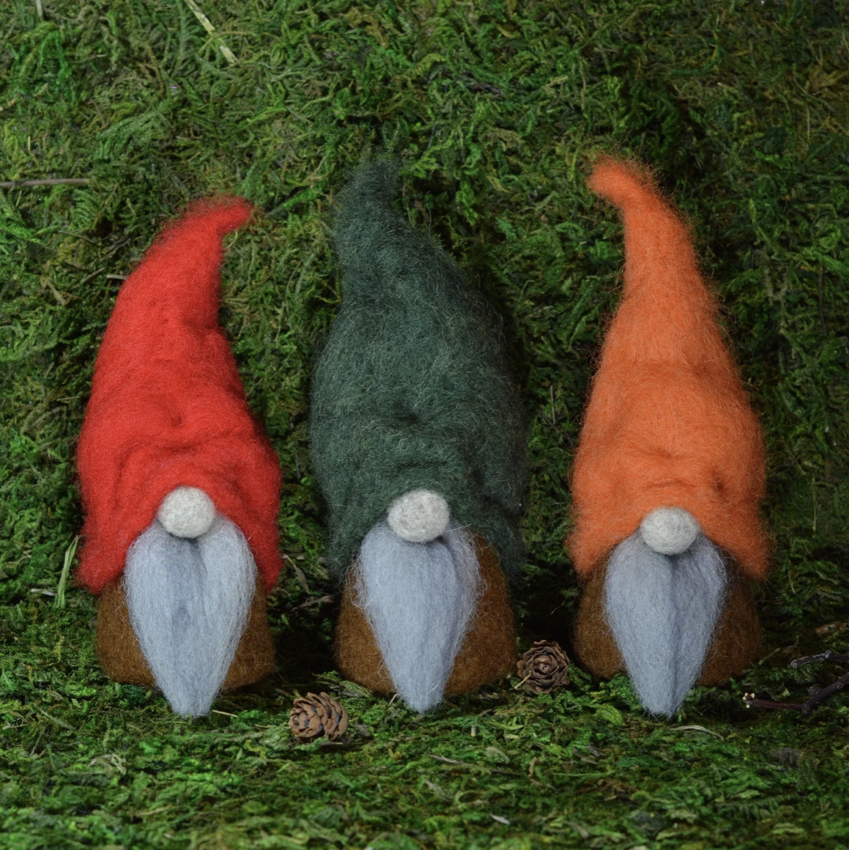 Fall Gnomes For Autumn
