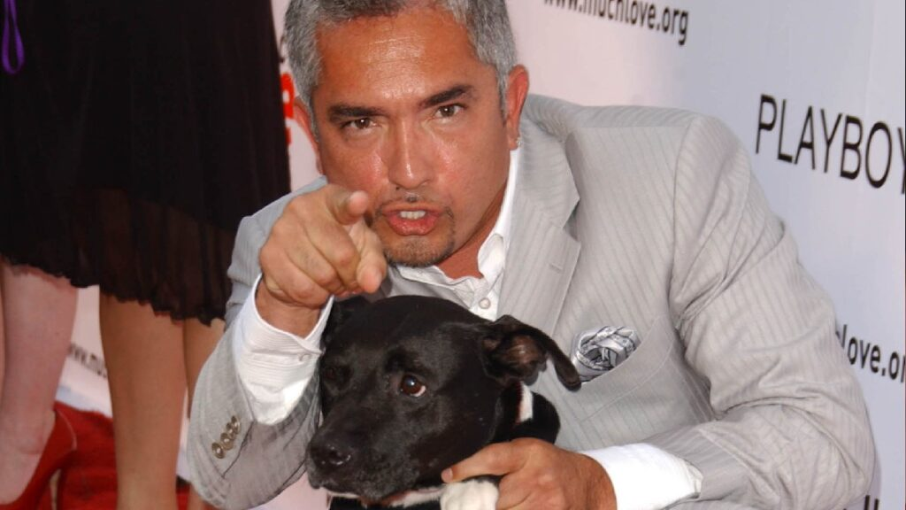 Cesar Millan wears a pale gray suit and points to the camera while holding a black dog