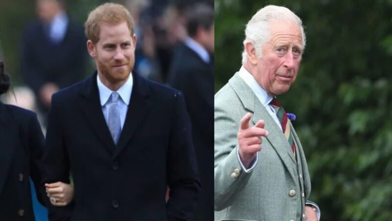 Prince Harry wears a dark suit and walks out doors. Prince Charles wears a gray suit and points while outdoors