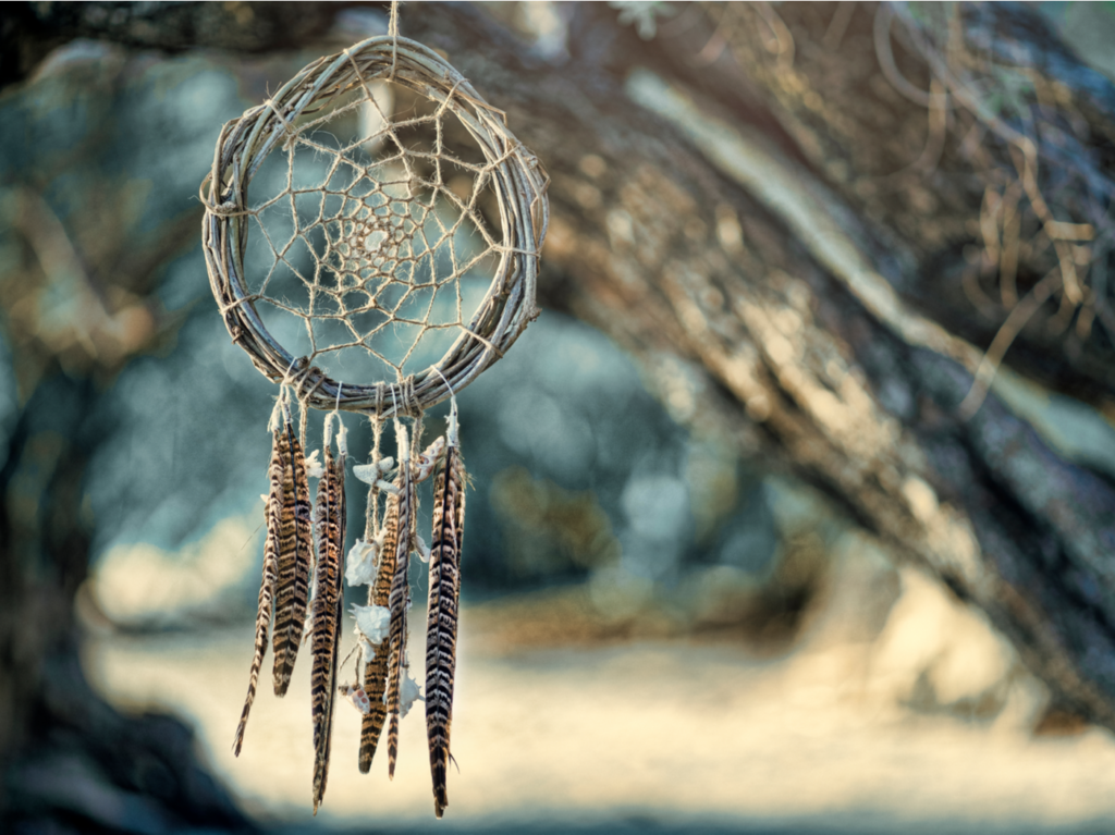 A handmade dreamcatcher hanging from a tree