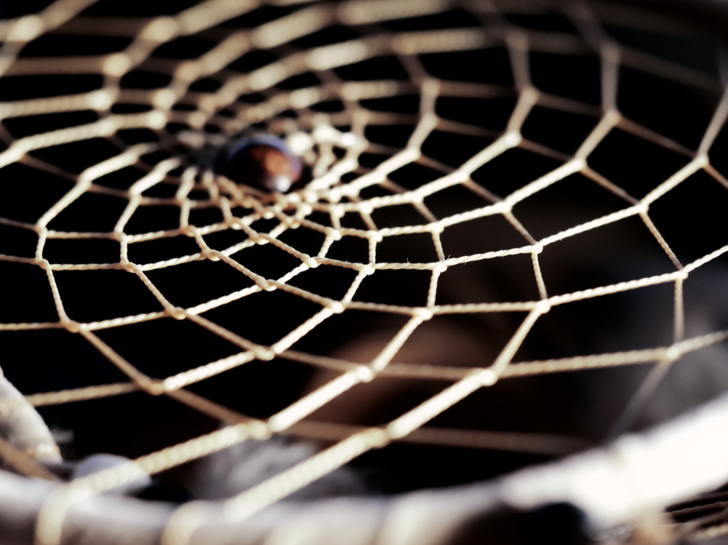 The webbing of a dreamcatcher against a black background