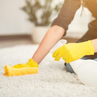 Image of woman cleaning carpet