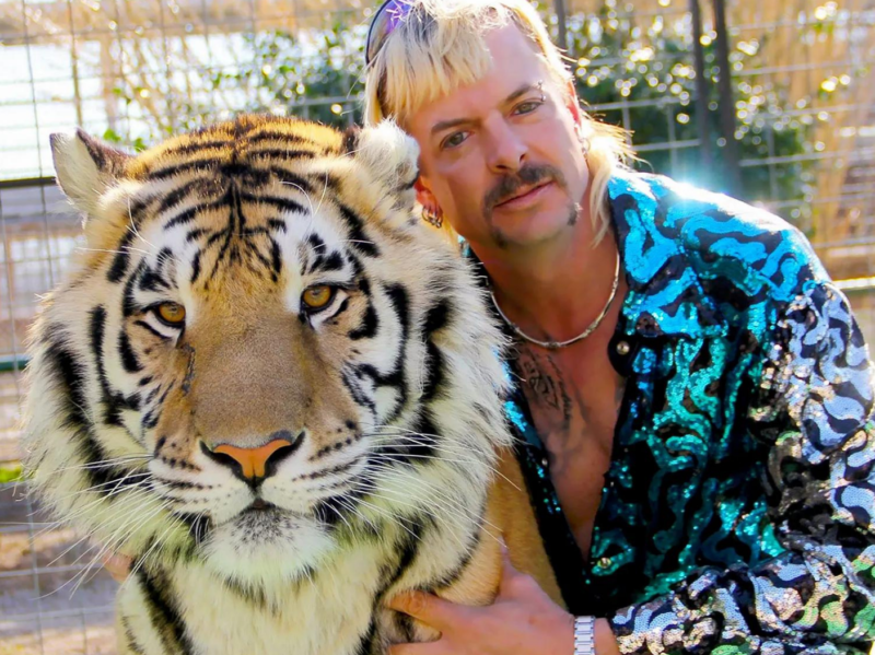 Joe exotic poses next to a tiger wearing a sequined leopard spotted jacket