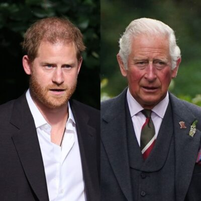 side by side photos of Prince Harry in a black suit and Prince Charles in a grey suit