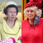 side by side photos of Princess Anne in yellow and Camilla Parker Bowles in red