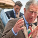 Prince Charles wears a brown suit and colorful tie outdoors at a royal event